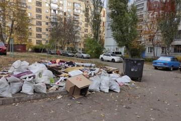 В Запорожье 3 месяца не могут вывезти мусор с мусорной площадки (фото)