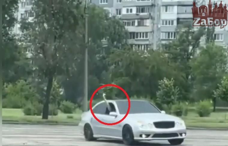 В Запорожье в центре города устроили дрифт на машине со стрельбой (видео)