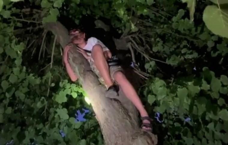 В Запорожье снимали с дерева ребенка, который не мог самостоятельно спуститься (фото)