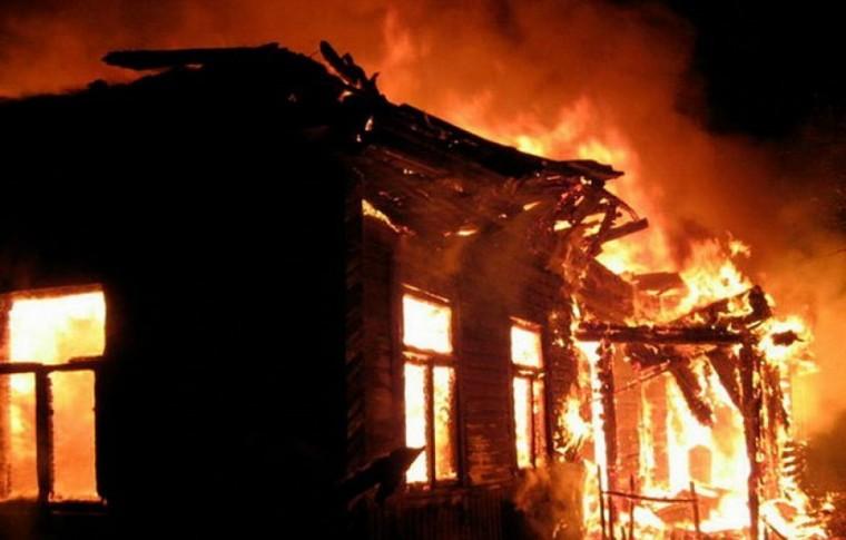 В Запорожской области на пожаре в собственном доме погиб мужчина (фото)